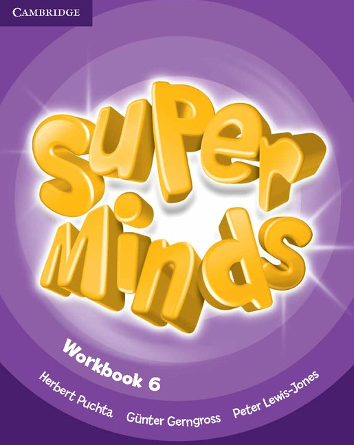 Super Minds 6 Workbook : 9780521223980
