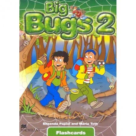 Big Bugs 2 Flashcards