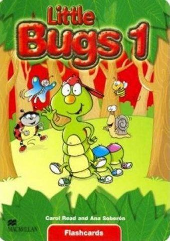 Little Bugs 1 Flashcards