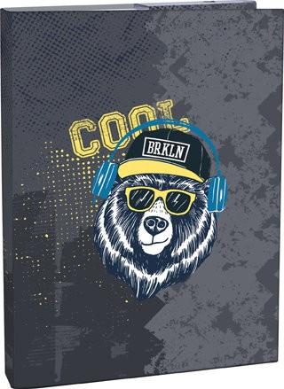 Box na sešity A4 Cool bear
