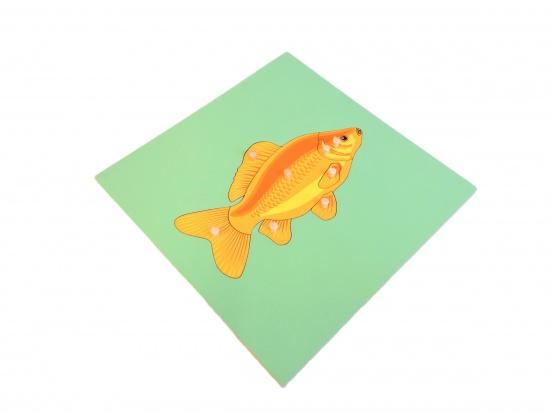 Puzzle s kostrou - ryba : 8596027000205
