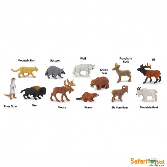 Tuba - Zvířata Severní Ameriky : 95866697006