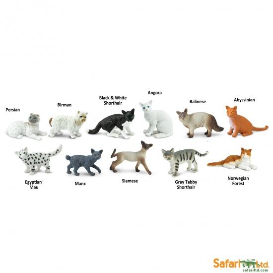 Tuba - Domácí kočky : 95866699208