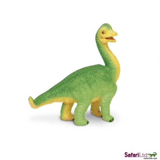 Mládě brachiosaura : 095866301200