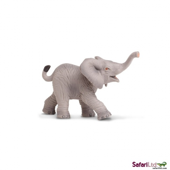 Mládě slona afrického : 95866238520