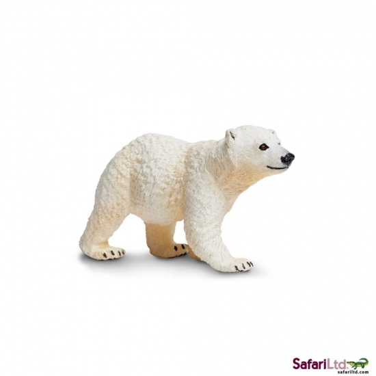 Mládě medvěda ledního
