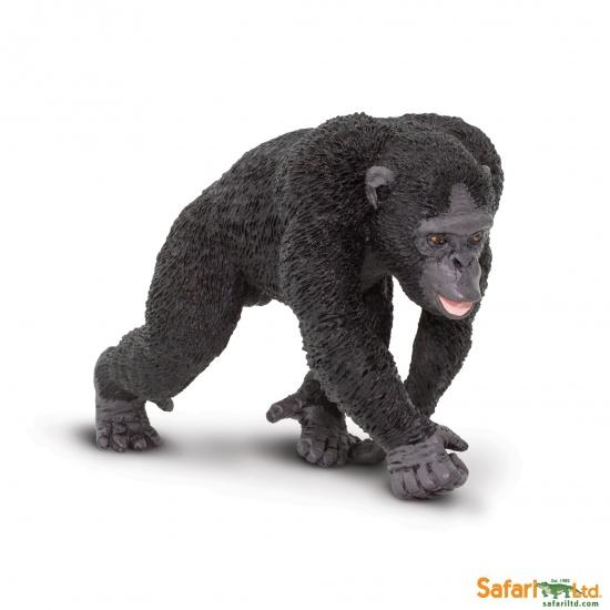 Šimpanz : 95866000363