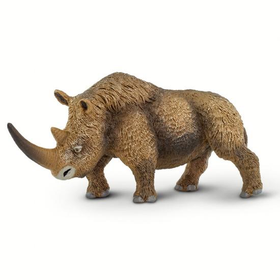 Nosorožec srstnatý : 095866002114