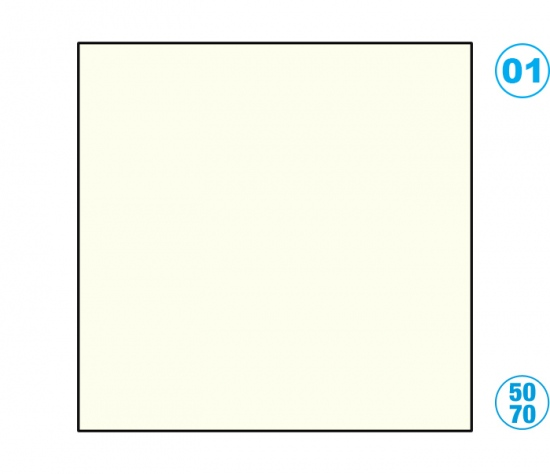 Papír barevný 50 x 70cm bílý perlově
