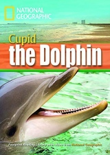 FOOTPRINT READING LIBRARY: LEVEL 1600: CUPID THE DOLPHIN with M/ROM (BRE)