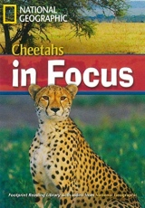 FOOTPRINT READING LIBRARY: LEVEL 2200: CHEETAH CHEETAHS IN FOCUS (BRE) with Multi-ROM