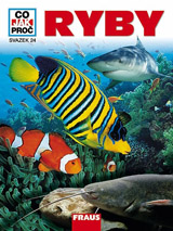 CO JAK PROČ 24 - Ryby