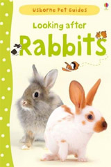 Looking after rabbits