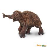 Mládě mamuta srstnatého